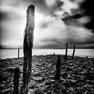 Holy Island by Rory Garforth