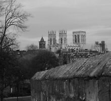St. Peter, York by WatscapePhoto
