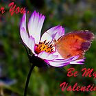 Be Mine Valentine by R&PChristianDesign &Photography