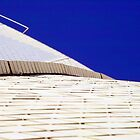 White tiles of Opera House by ccsad