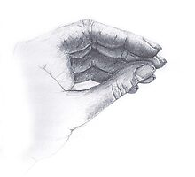 hand drawing by CTDesigns