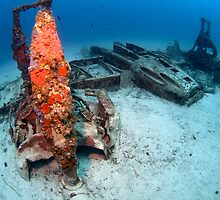 Bristol Beaufighter wreck by spyderdesign