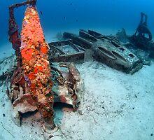Bristol Beaufighter wreck by spyderdesign