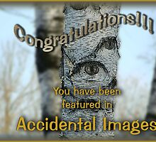 Accidental Images Banner Challenge by vigor
