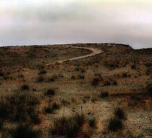Twilight Grasslands by RC deWinter
