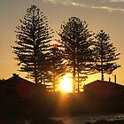 Wallaroo sunset by bowenbw