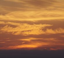 Sky of Gold by Brian Edworthy