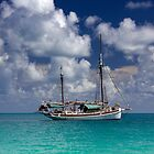 Becalmed In Paradise by bidkev