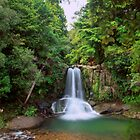 Waiau Falls, Coromandel by Paul Mercer