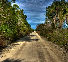 Everglades Road by njordphoto