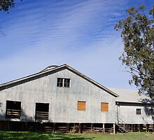 North Callandoon Wool-shed by VigourGraphics