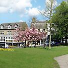 Montpellier Gardens Harrogate by neilk