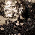 Tangled Web by Minna  Waring