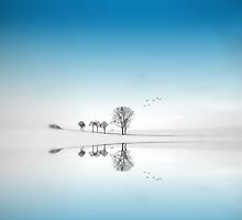 Blue Season by Philippe Sainte-Laudy