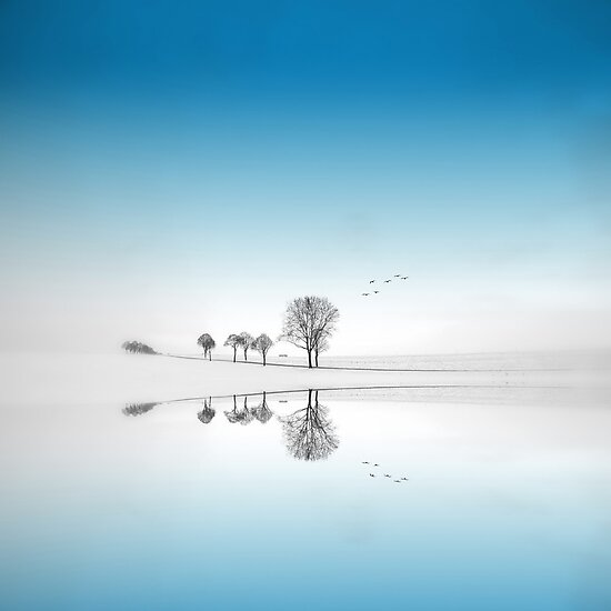 Blue Season by Philippe Sainte-Laudy
