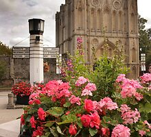 Bury St Edmunds by Daniii
