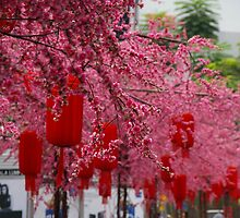 Blossoms That Stretch To Infinity by David McMahon