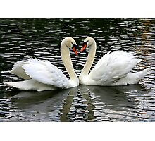 Two Hearts Beat as One Photographic Print