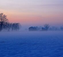 the fog and the snow by gandini luisella