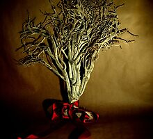 Desiccated Shrub with Ribbon on Brown Paper by goodieg