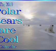2010 Polar Bear Calendar by David Booth