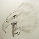 Bald Eagle Sketch by janetmarston