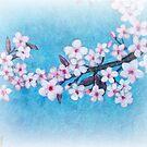 Spring - Cherryblossom - Card by Sybille Sterk