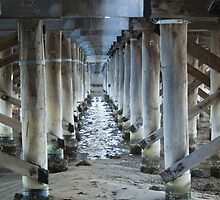 Under Canning Bridge by pennyswork