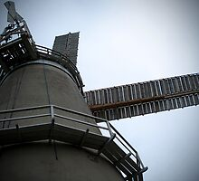 Looking up to the Windmill - Denver Norfolk by johnny2sheds