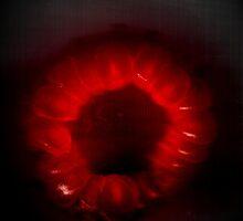 Raspberry scan by bubblehex08