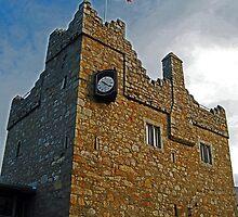 Viking Castle -Dalkey by Ferdinand Lucino