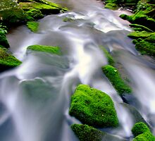 SPRING FLOW AT MARSHALLS CREEK  by MIKESANDY