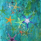 Starfish 2 by Margo Humphries