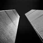 Twin Towers by Mark Van Scyoc