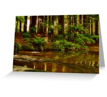 """Paradise Reflections"" Greeting Card"