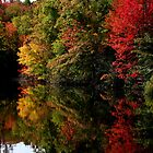 Mirror Lake Amongst the Colour Change by BGpix