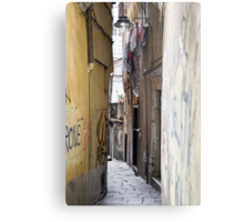 alleys  of Genoa Metal Print