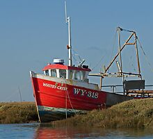 The Red Fishing Boat At Burnham Overy Norfolk by johnny2sheds