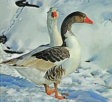 Geese in Snow - 1 by Graham Clark