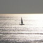 Sailing by nancy salamouny