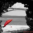 The red umbrella by VirtualArtist