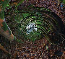 Alice in Wonderland by Richard Horsfield