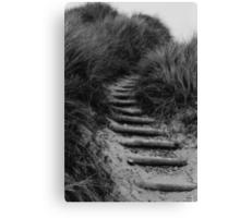 Dune Steps Canvas Print