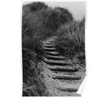 Dune Steps Poster