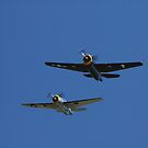 Evans Head Fly-In - Grumman Avenger Formation Flypast by muz2142