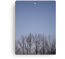 Bare Trees and a Three-quarter Moon Canvas Print