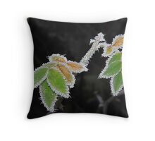 Pretty....cold Throw Pillow