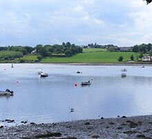 Tranquility on the River Foyle by Gerry  Temple