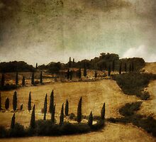 *Val d'orcia* by funkymarmalade