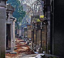 cimetière du père-lachaise, paris by gary roberts